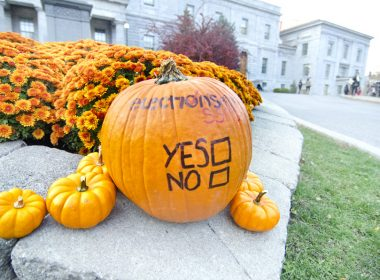 The referendum campaign period runs from Nov. 1 to 11, and polling will take place between Nov. 5 and 11. (Alexandra Allaire / McGill Tribune)