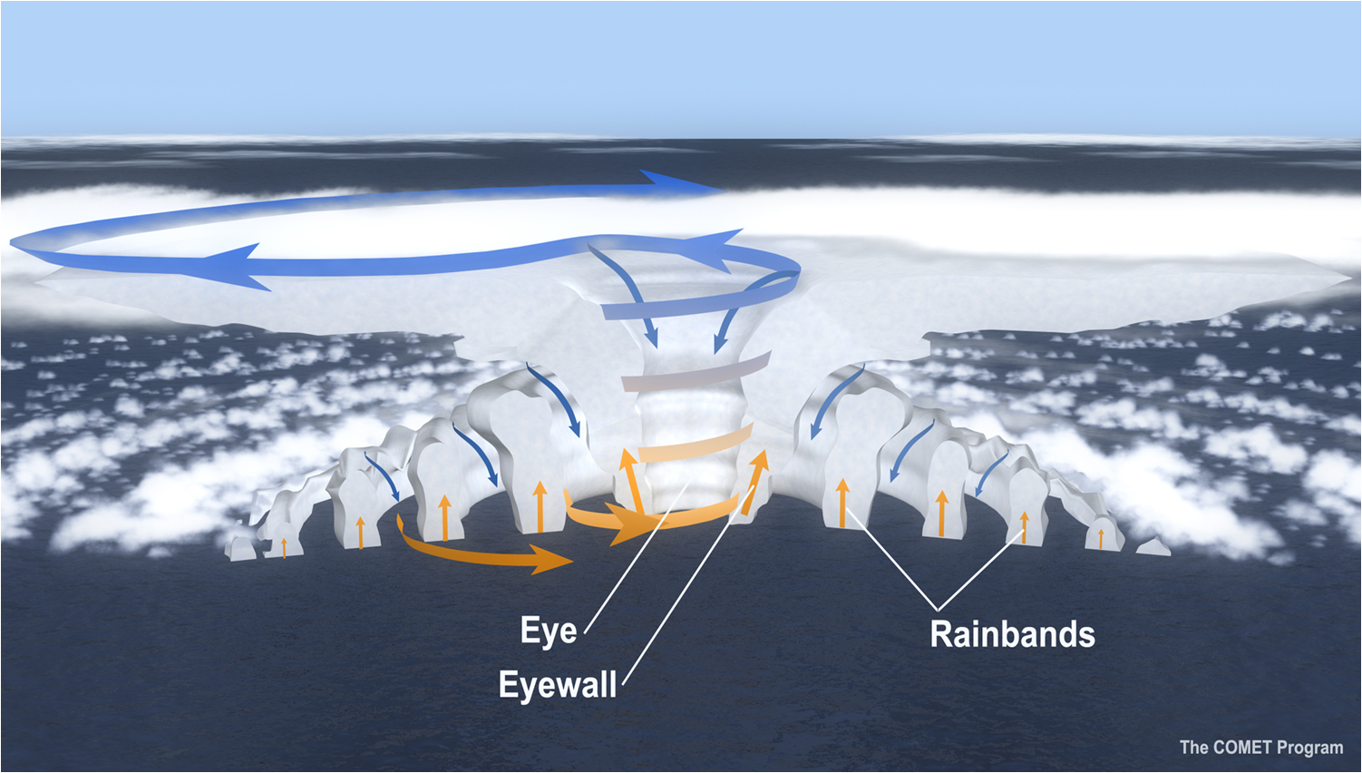 The cross-section of a hurricane, with arrows showing the direction of wind. (hurricanescience.org)
