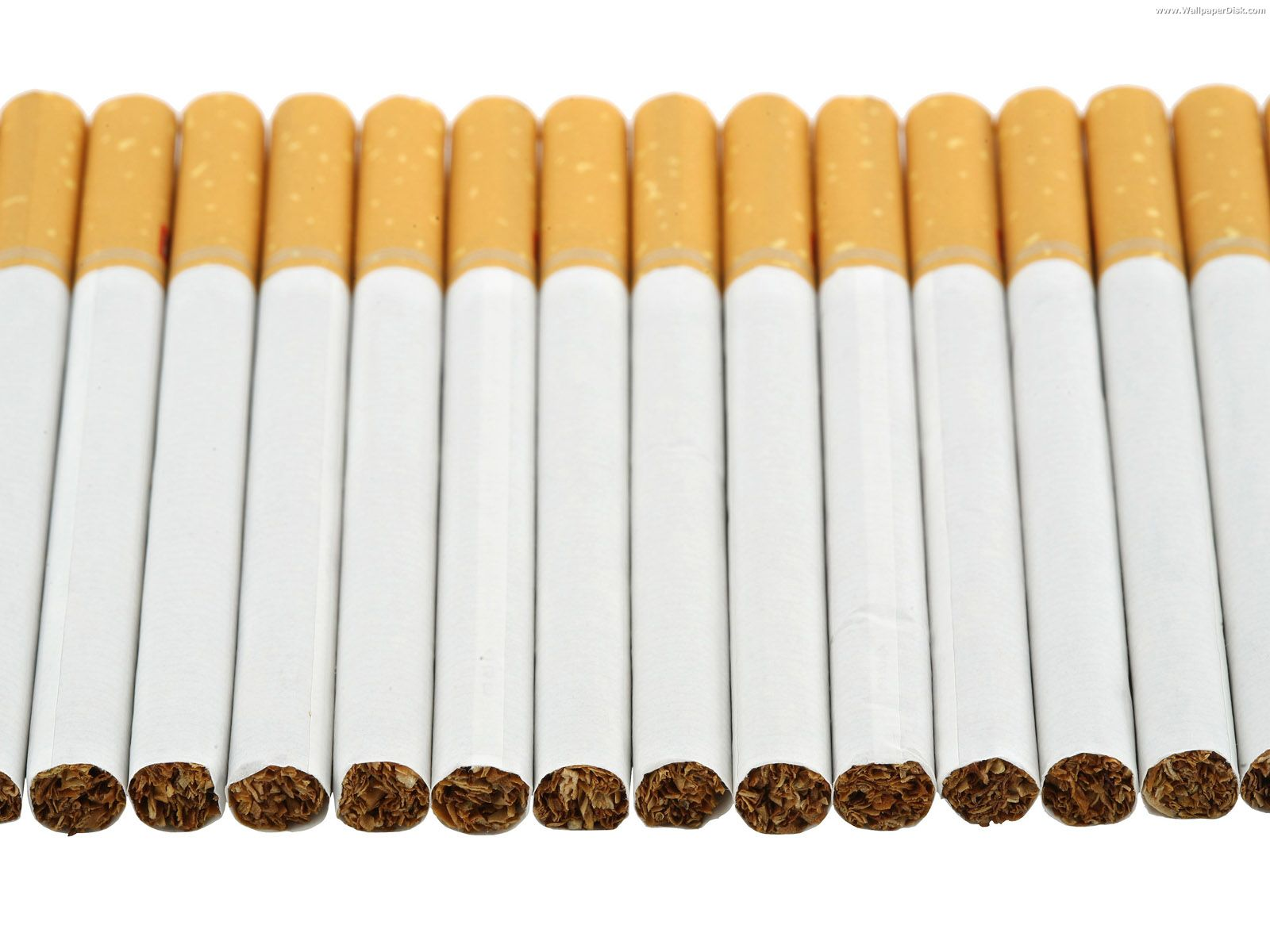 Photo credit: (cigarettes-cigarettes.com)