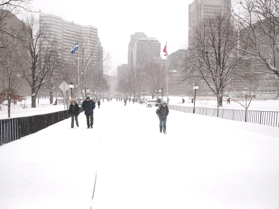 The beautiful McGill campus. (Wendy Chen / McGill Tribune)