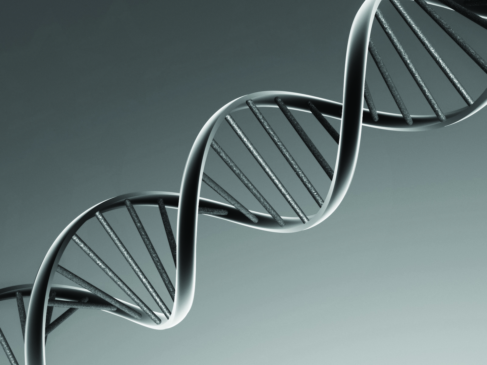 Naturally, DNA stores all the information to create a multicellular organism from a single cell. (images-forbes)