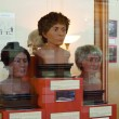 Facial reconstructions at Redpath Museum at McGill