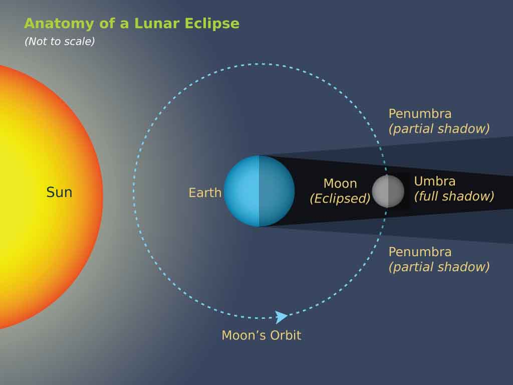 Lunar eclipses are due to a special orientation of the Sun, Earth, and Moon. (astronomy.starrynight.com)