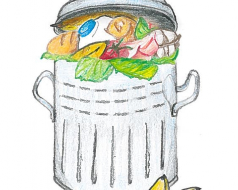 Student-led initiatives at McGill take significant steps to reduce their food waste. (Alessandra Morales /  The McGill Tribune)